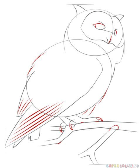 Drawn owl beginner A Drawing by draw Step