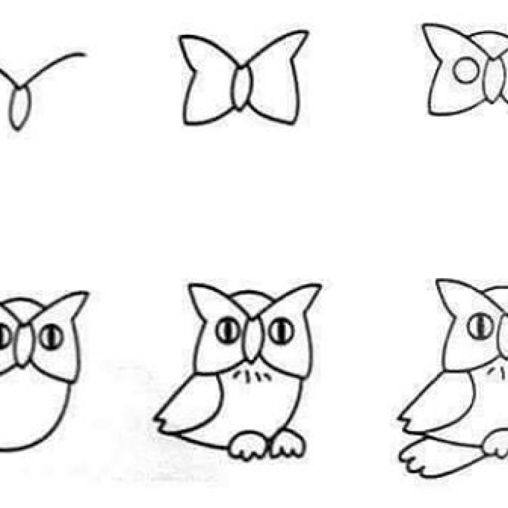 Drawn owl beginner How step  easy step