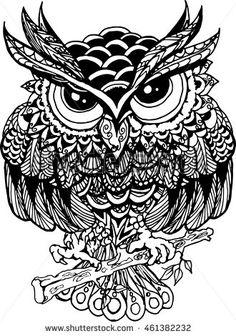 Drawn owl bird With sitting Buhos drawn