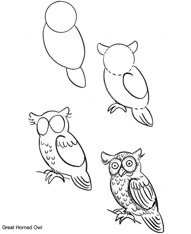Drawn owl bird Best Bunny on draw Pinterest