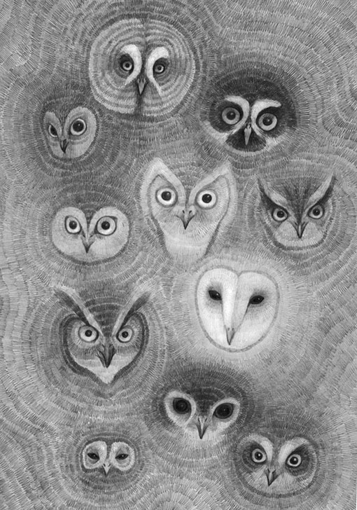 Drawn owl face My of drawn owl Hand