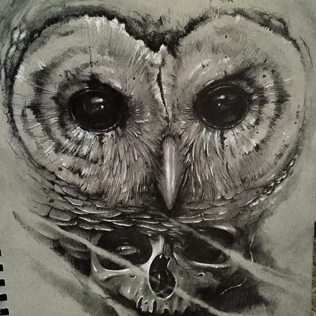Drawn owl face Drawn Lethal color a owl