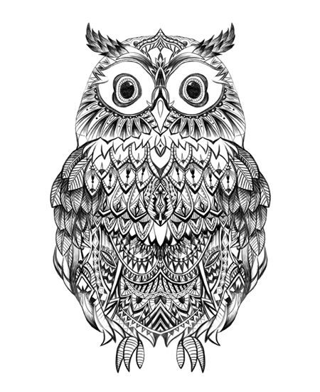 Drawn owlet graphic design black Detail Pinterest hand Owl #graphic