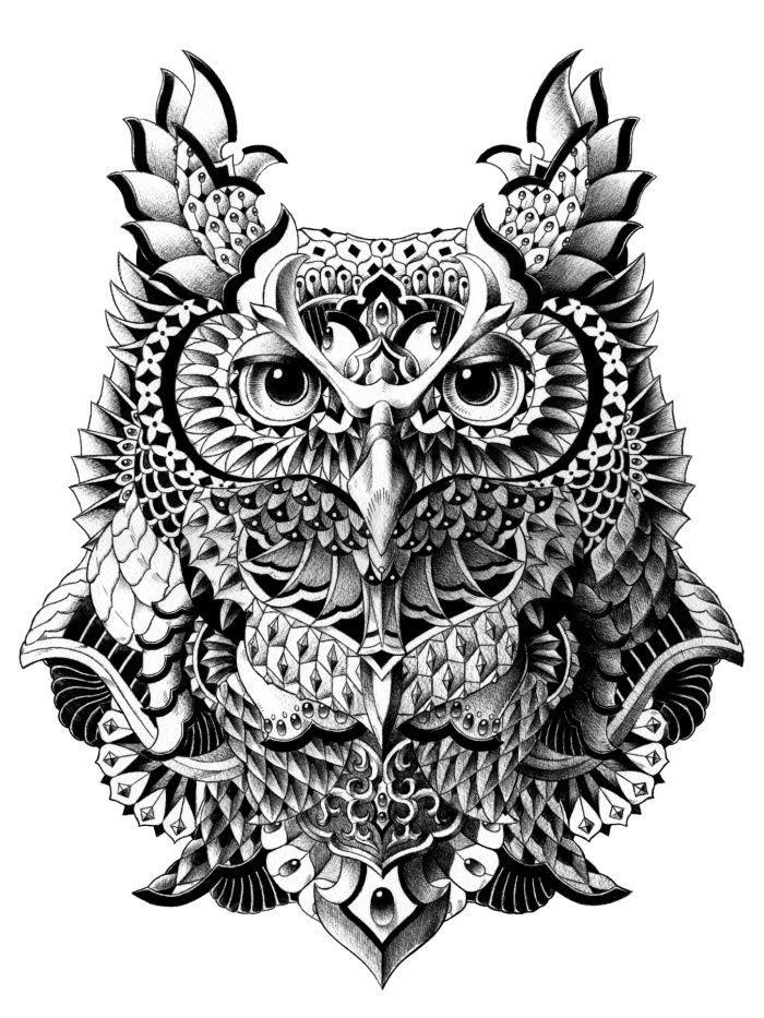 Drawn owlet graphic design black Print Owl Century Drawings Best