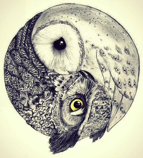 Drawn brds grunge Acid life Grunge birds life