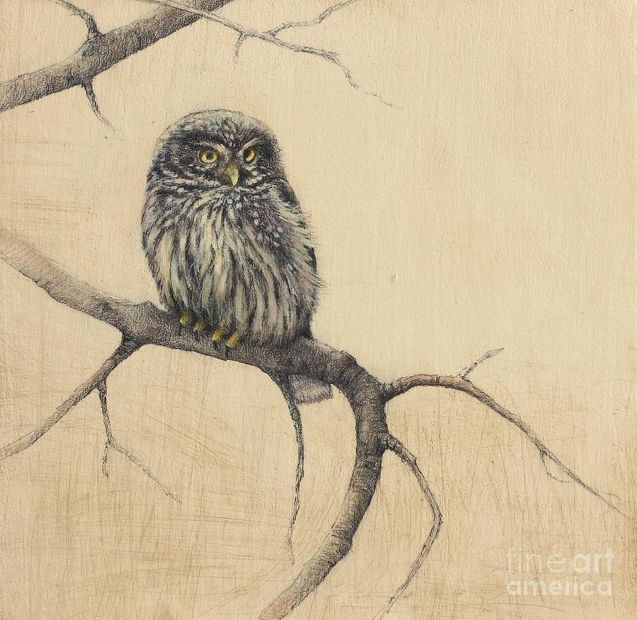 Drawn owl little owl Drawing Little Lori Little Drawing