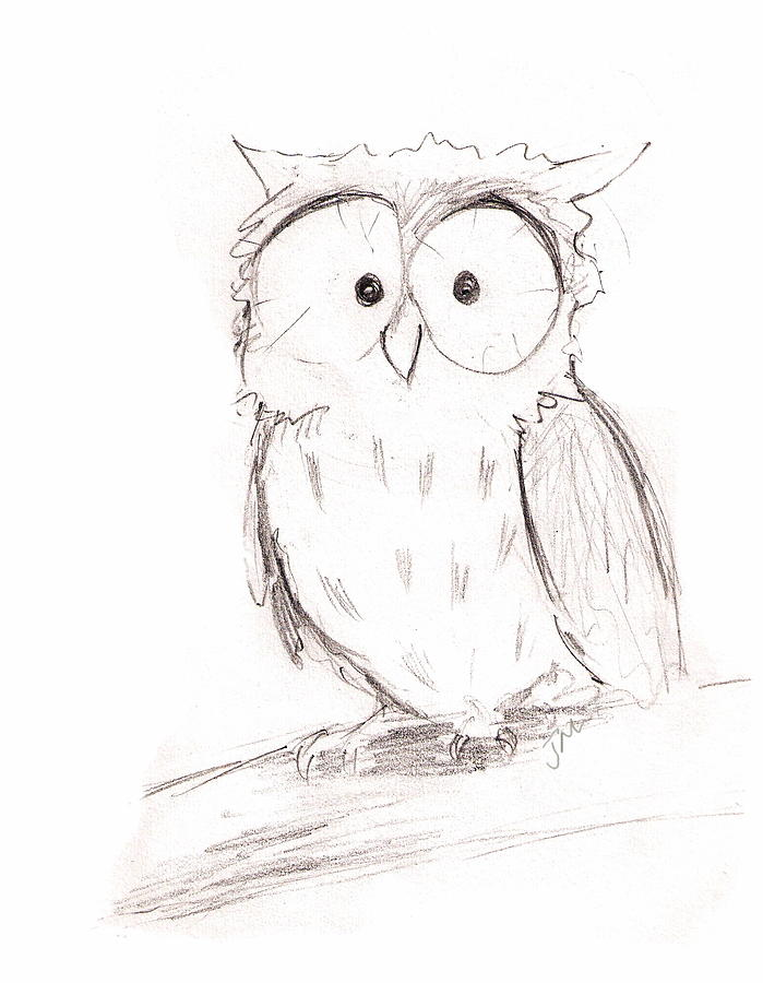 Drawn owl little owl Drawing Little Jacqui Little Drawing
