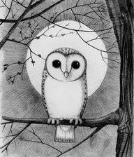 Drawn owl moon Jiji  kiki's service little