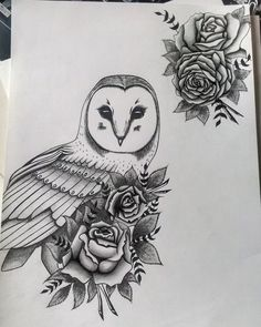 Drawn owl moon Roses moon Owl  and