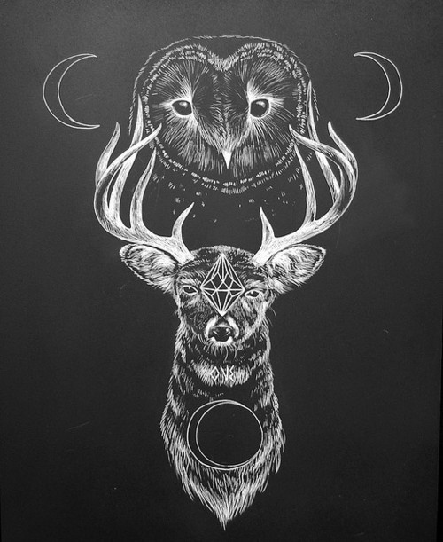 Drawn owl moon Moon 38 Power on stag