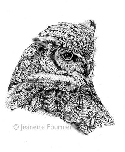 Drawn owl nature #2