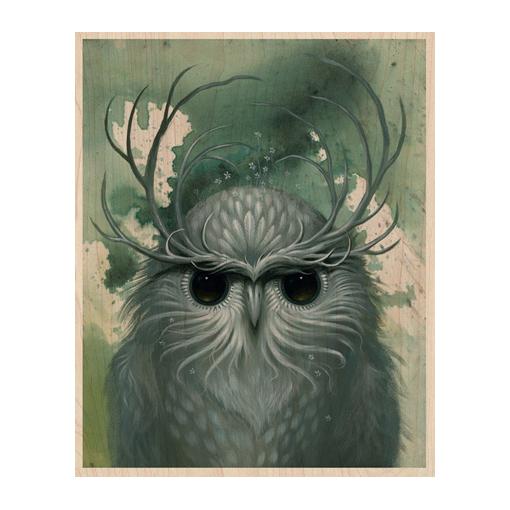 Drawn owl nature #8