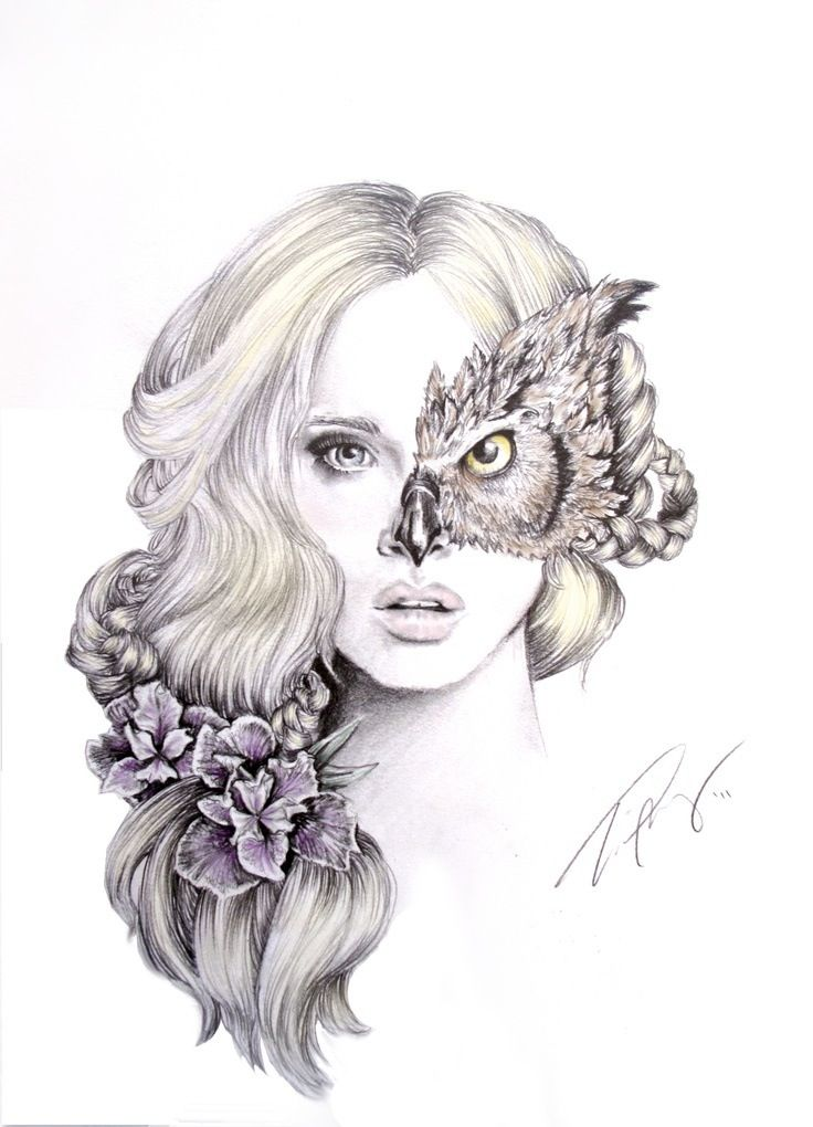 Drawn owl nature #6