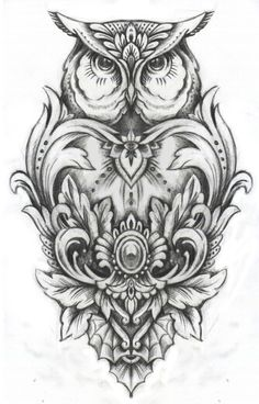 Drawn owl owel Pulu back This Intricate Chiang