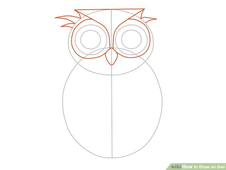 Drawn owl owel Owl an Image 13 (with