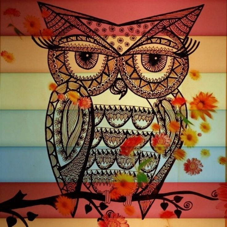 Drawn owl owel On OwlsOwl 2c3d0b95b155c808ba0b5c18d7b5cbfe CHOUETTES Pinterest