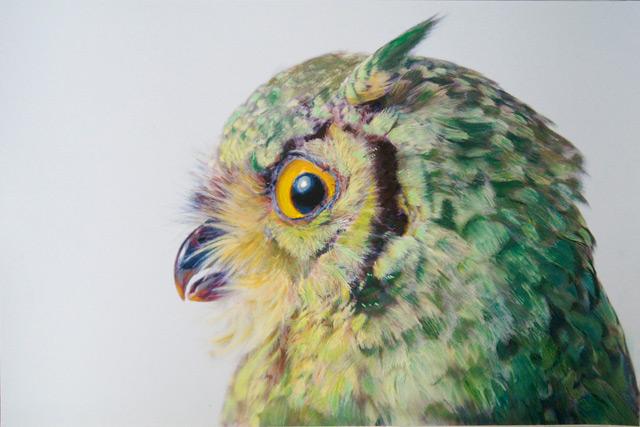 Drawn owl pastel Using of drawings Pusateri John