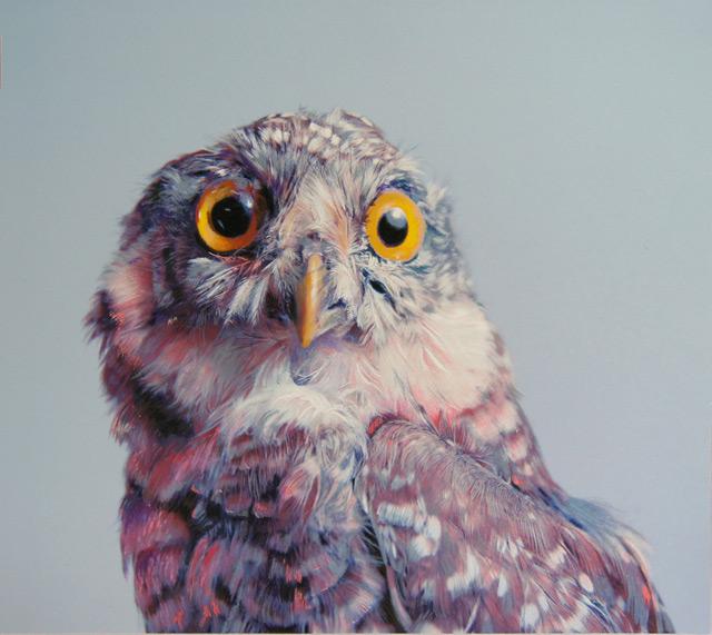 Drawn owl pastel Using John Pusateri Colossal Owl