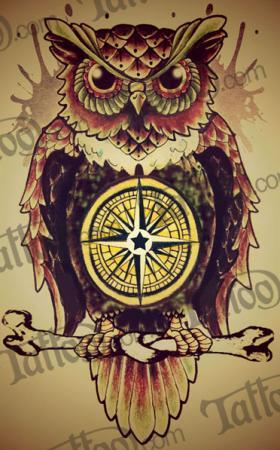 Drawn owl school #9