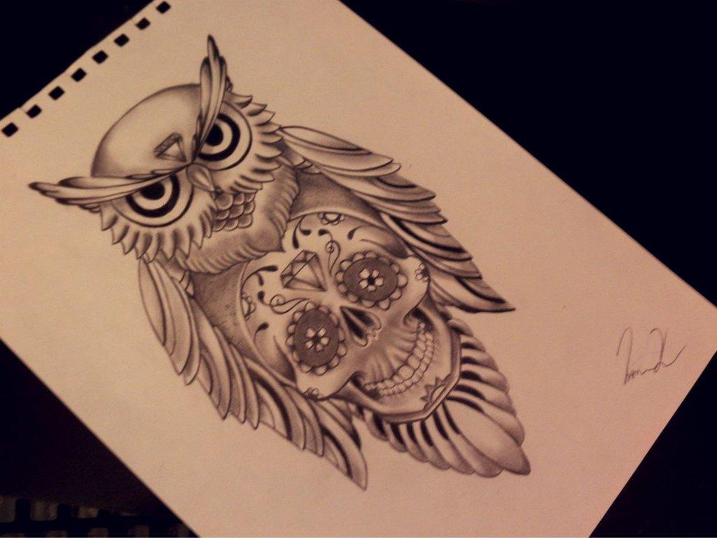 Drawn owl school #6