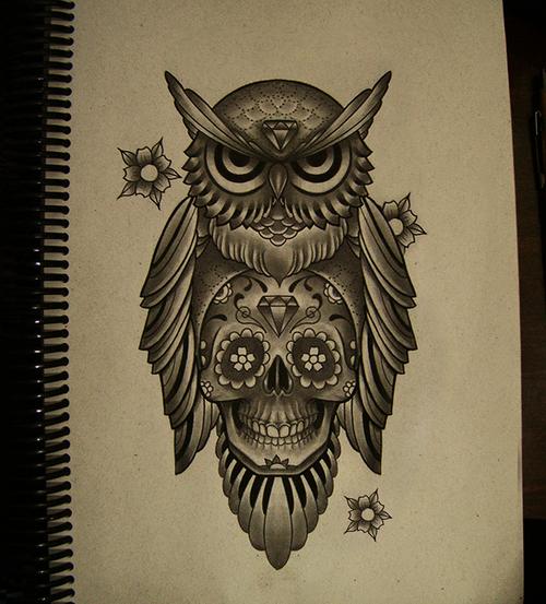 Drawn owl school #2