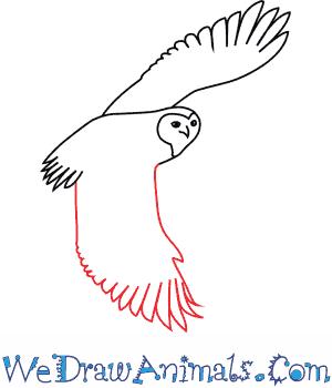 Drawn owl snowy owl #8