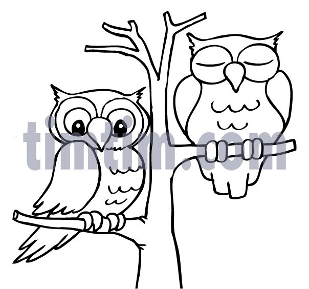 Drawn owl tree drawing About and Find cartoon QUILTS