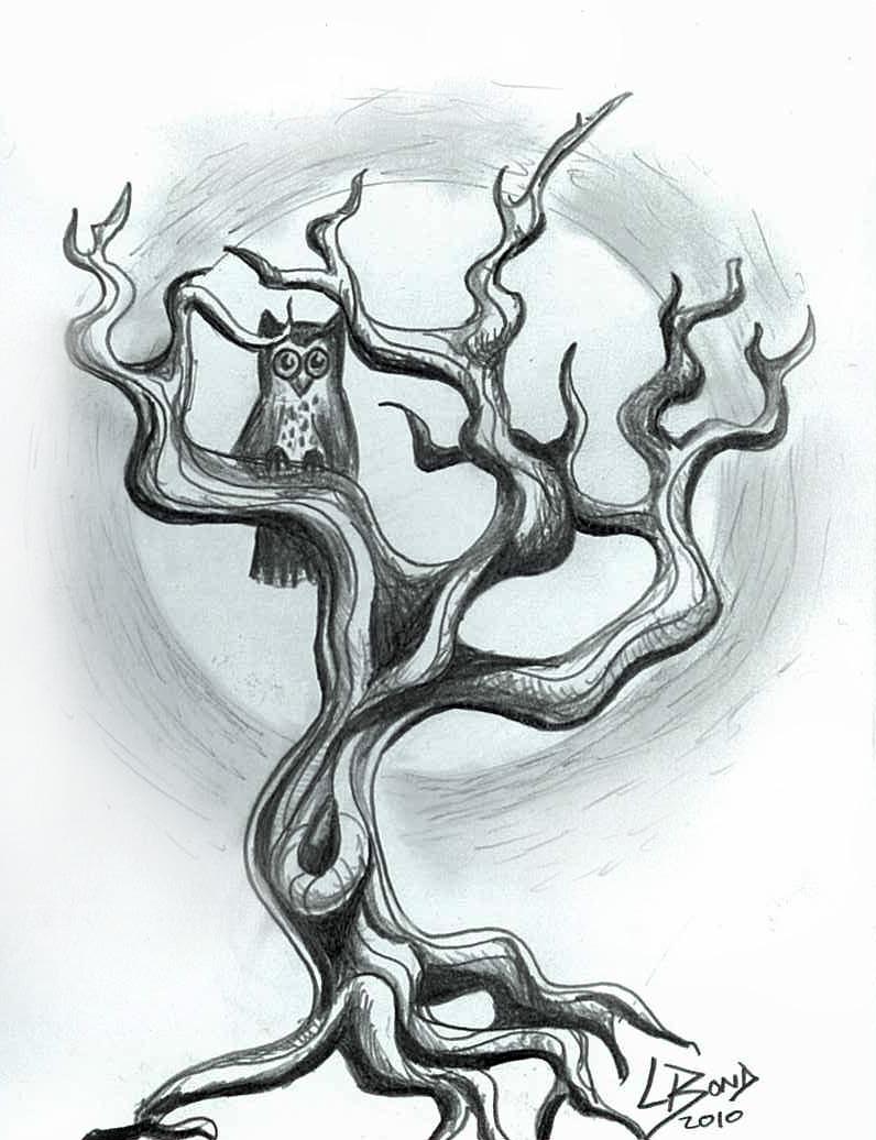 Drawn owl tree drawing LeelaB Owl Owl LeelaB on