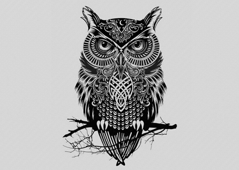 Drawn owl tribal #7