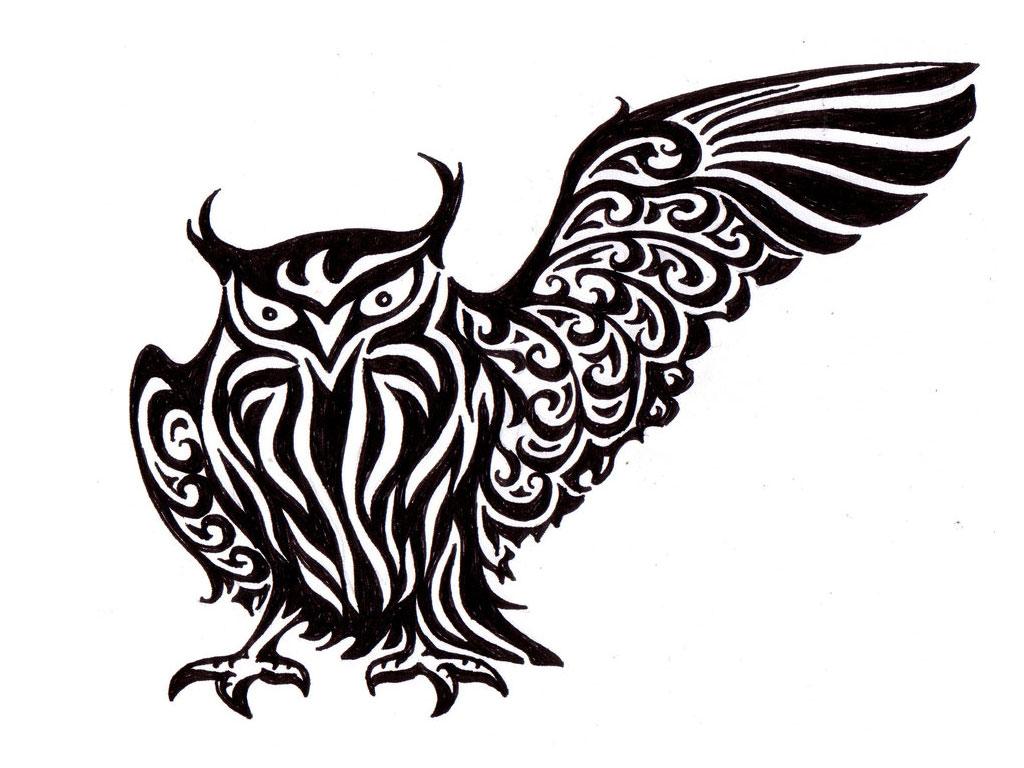 Drawn owl tribal #13