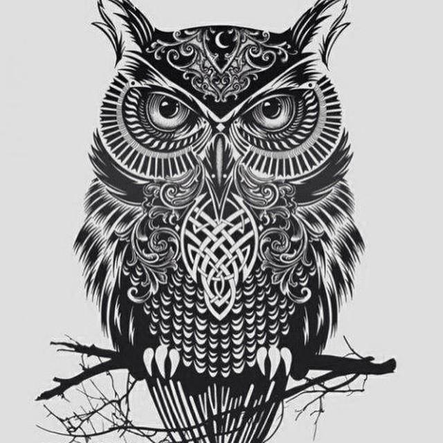 Drawn owl tribal #4