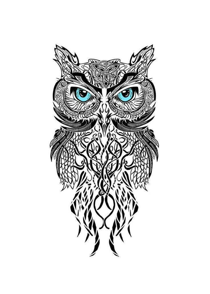 Drawn owl tribal #5