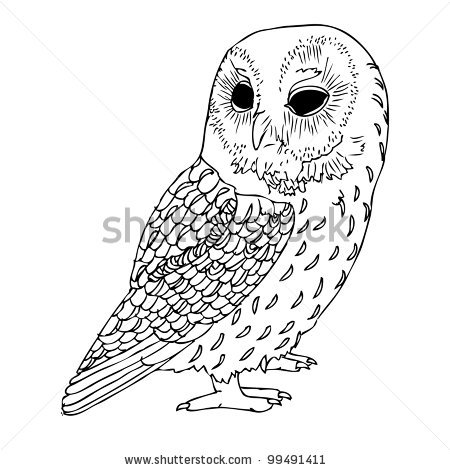 Drawn owl vintage Vintage Drawing  Owls Tutorials