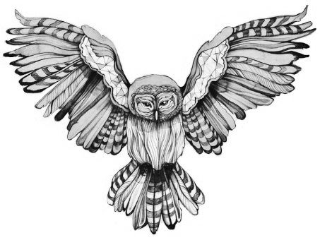 Drawn owl we heart it #9
