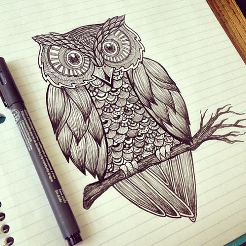 Drawn owl we heart it #12