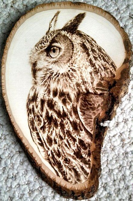 Drawn owl wood Burning wood Pinterest wood Owl
