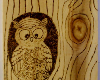 Drawn owl wood Water burning gift original box