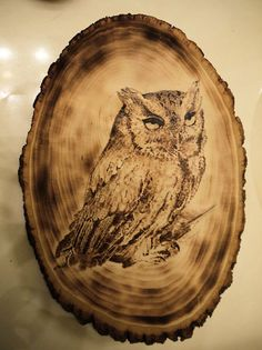 Drawn owl wood Drawings Made via Owl wood