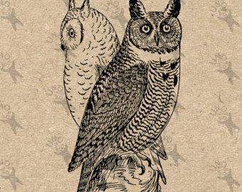 Owlet clipart mexican Image Digital printable clip Vintage