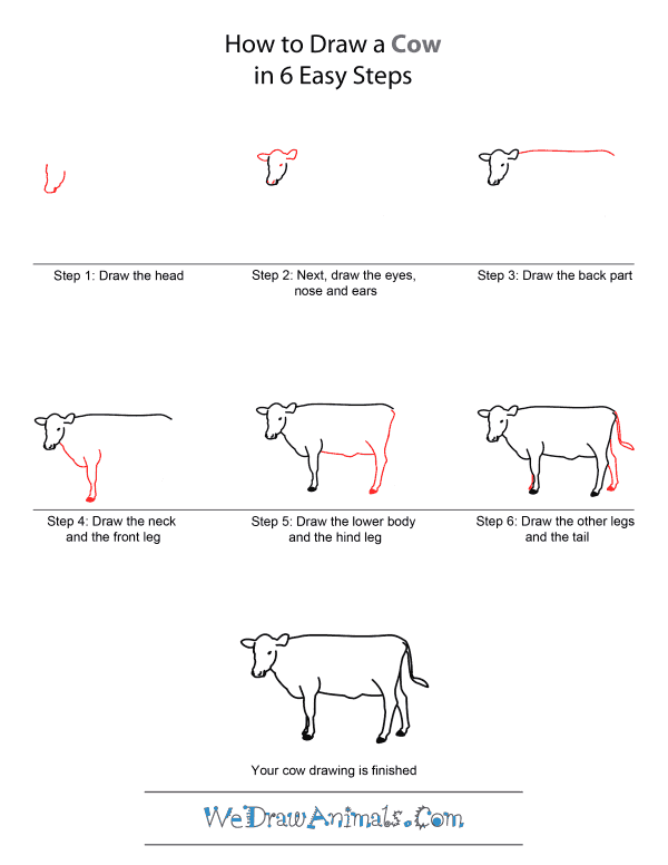 Drawn beef By Draw How Draw Cow