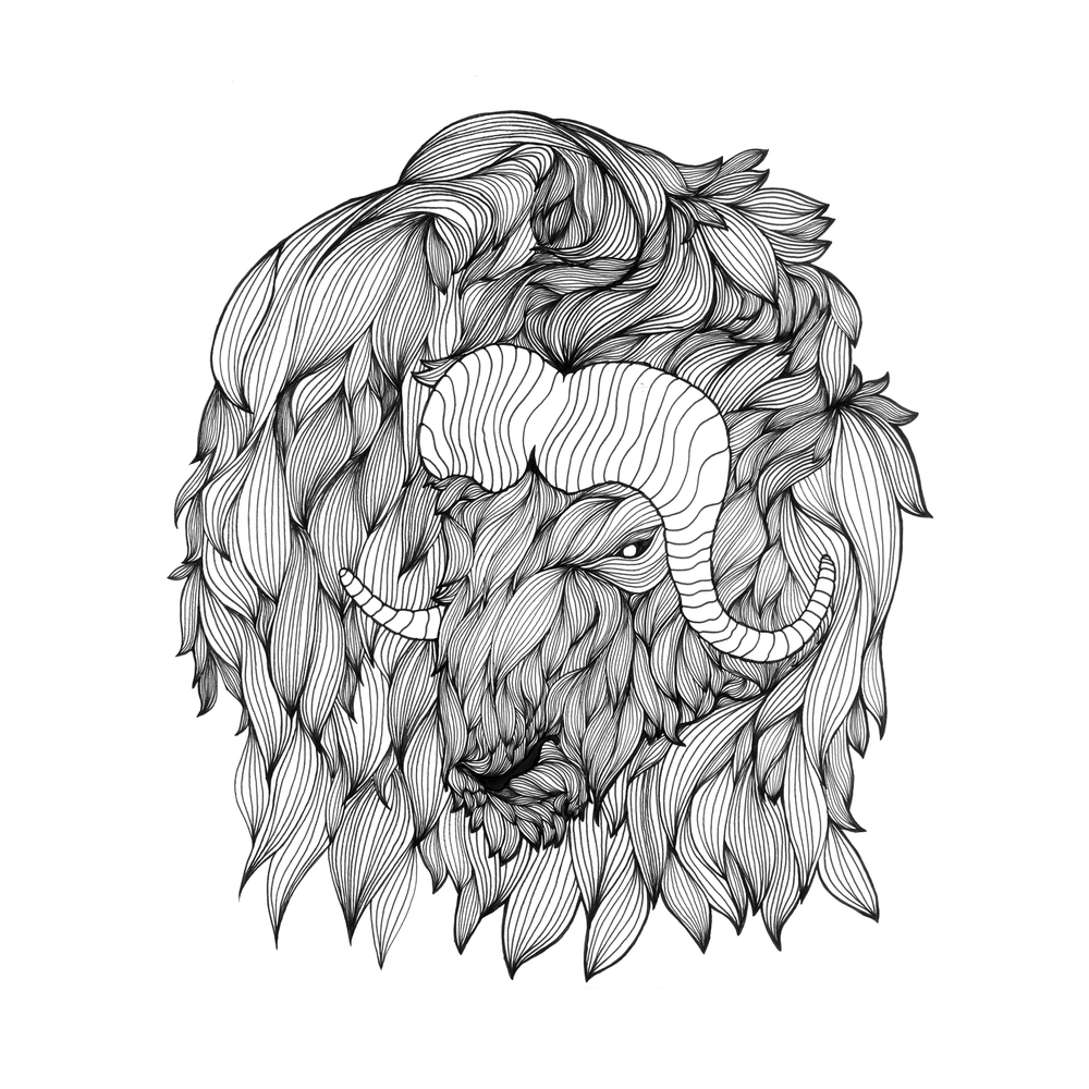 Muskox clipart brush #7