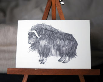 Muskox clipart red cross #8