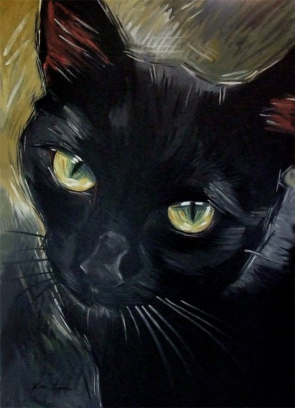 Drawn painting cat #9