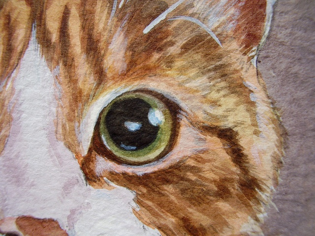 Drawn painting cat #7