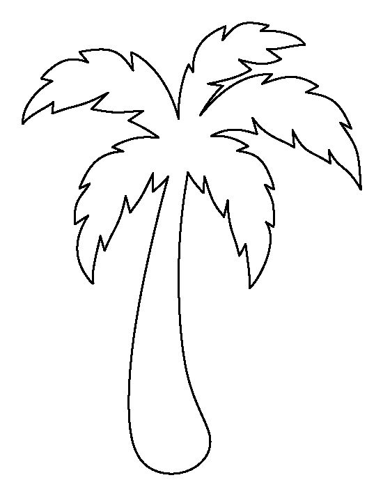 Drawn palm tree #14