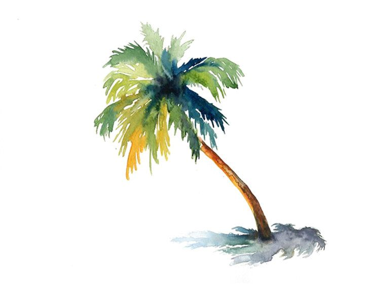 Palm Tree clipart group On ideas by Ireart Pinterest