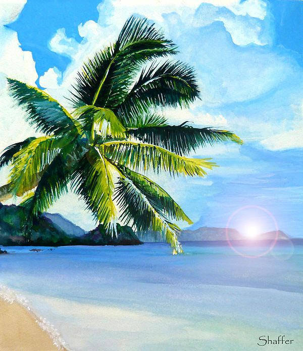 Drawn palm tree beach scene #6