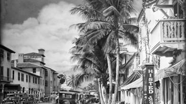 Drawn palm tree beach scene #7