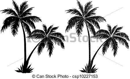 Drawn palm tree black and white #8