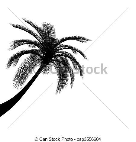 Drawn palm tree black and white #7